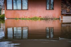 flood creative image