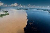 Meeting of waters manaus.jpg