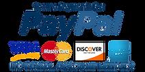 kisspng-paypal-payment-credit-card-american-express-servic-bronze-cross-5b20e76d9337e3.246