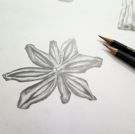 Anise. Pencils