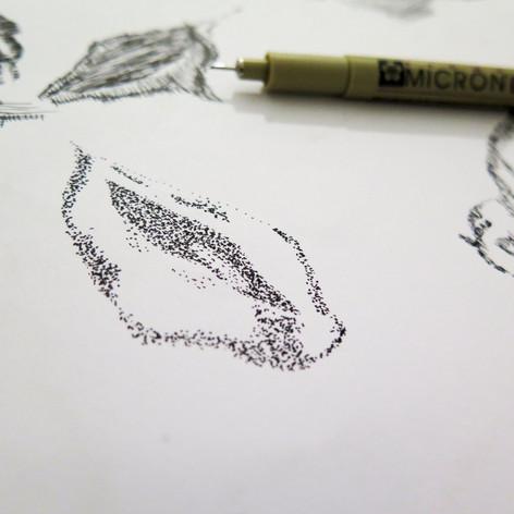 Anise. Pen