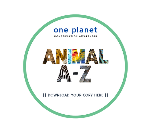 Animal A-Z.png