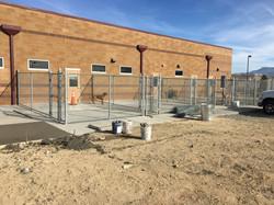 Mesa County Animal Services