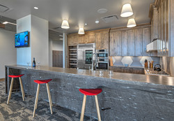 Kitchenette and Bar