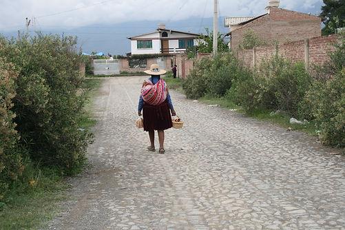 Bolivia 2016.jpg
