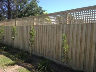 Building fences on the Mornington Peninsula