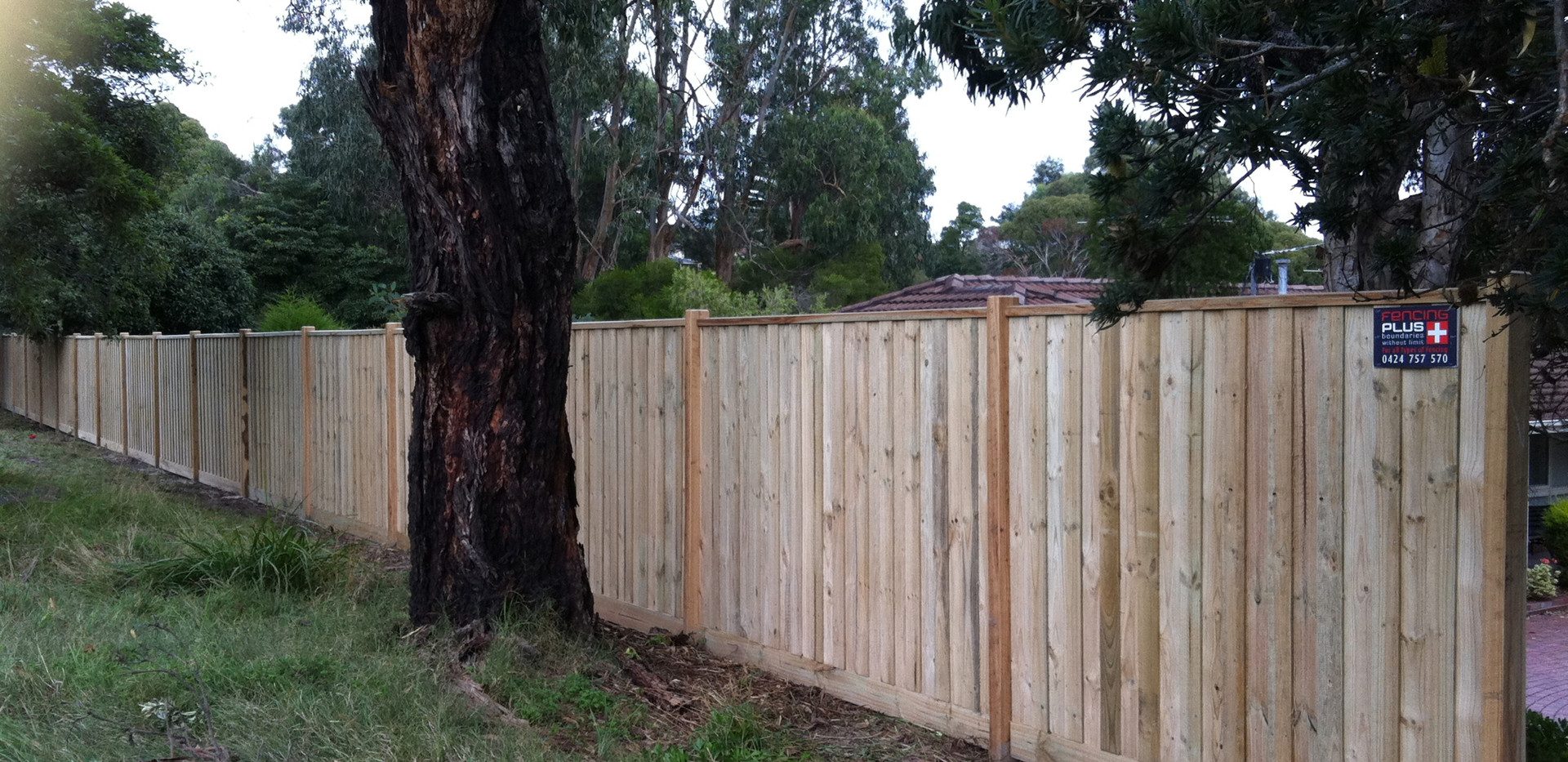 paling fence Mornington Peninsula Fences