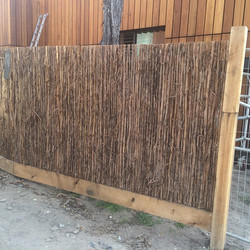 Instagram - Teatree fencing #builttolast #fence  #fast2k #allnatural