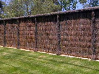 Top Five Tips for Brush Fencing