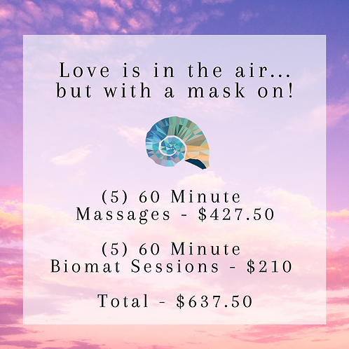 (5) 60 Minute Massages & Biomat Sessions