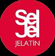 seljel_logo.png
