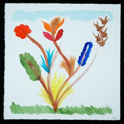 Britanny flowers