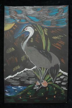 Robbie, Heron