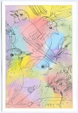 Bird Montage
