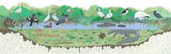 Alligator Hole