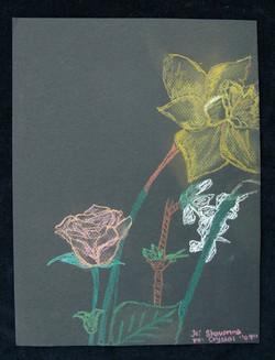 Shavonna, Flowers