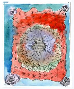 Nariah's big blossom
