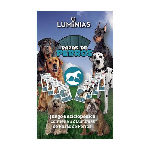 Luminias - Raza de Perros