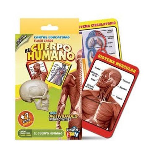 El Cuerpo Humano - Cartas Educativas School Fun