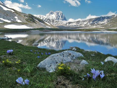 ABRUZZO: Contributo per zone montane