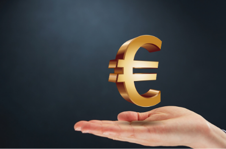 Introduction to the Price of Euro