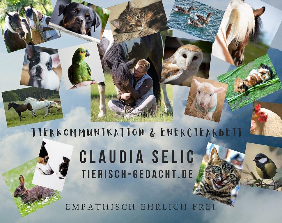 Tierkommunikation%20Moodboard%20Claudia%