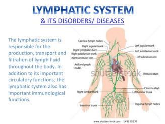 Drainage; Lymphatic System