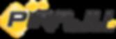 logo piraju 03.png