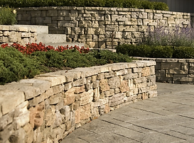Belvedere-Wall.png