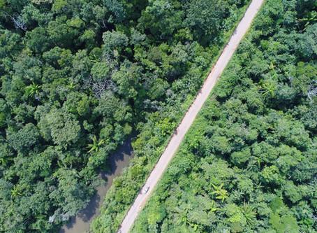 Drones | Levantamento Aéreo em Rodovias