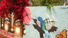 Graffiti e Meio Ambiente Urbano