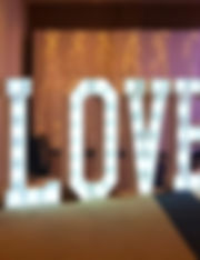 4ft LOVE lights