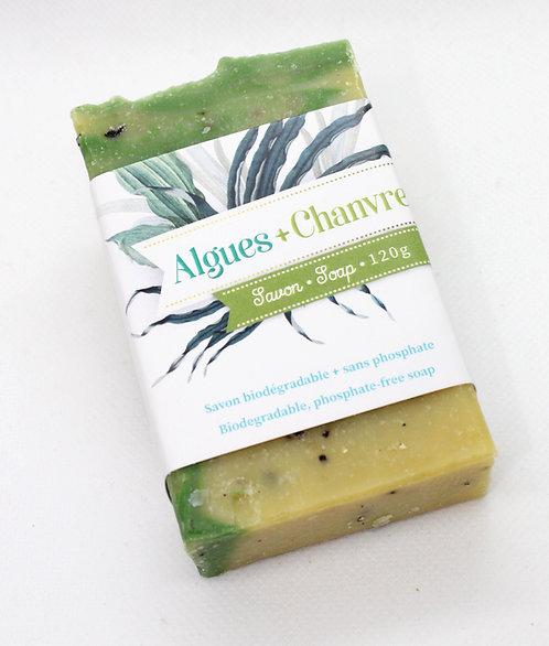 Savon Algues et chanvre