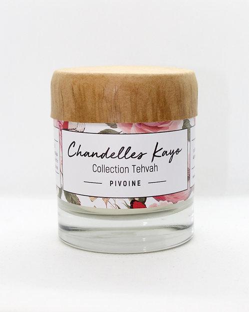 Chandelle Collection Tehvah Pivoine