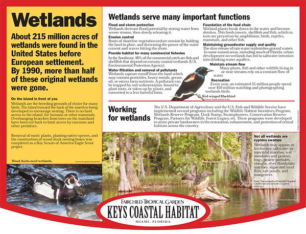 ftg 6.-Wetlands-ltr.jpg