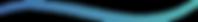 alo-website-divider-wave.png