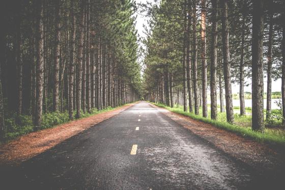 Lech Lecha: The Road Less Traveled
