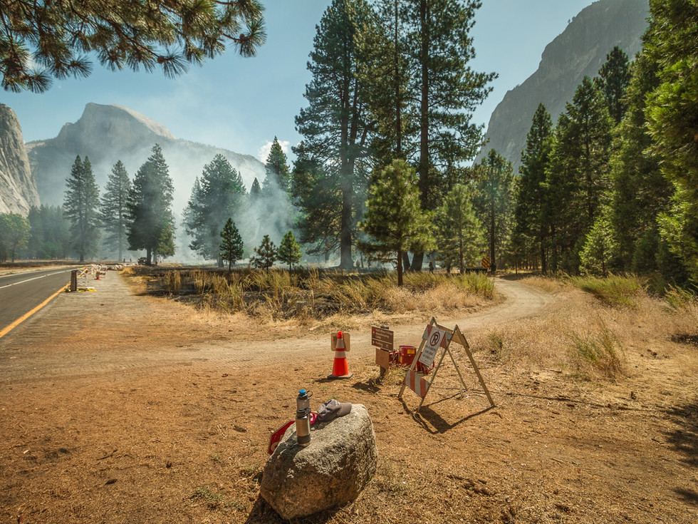 With such a high hazard of wildfire, park rangers set prescribed burn in order to reduce fuel buildup and stimulates the germination of some desirable forest trees.