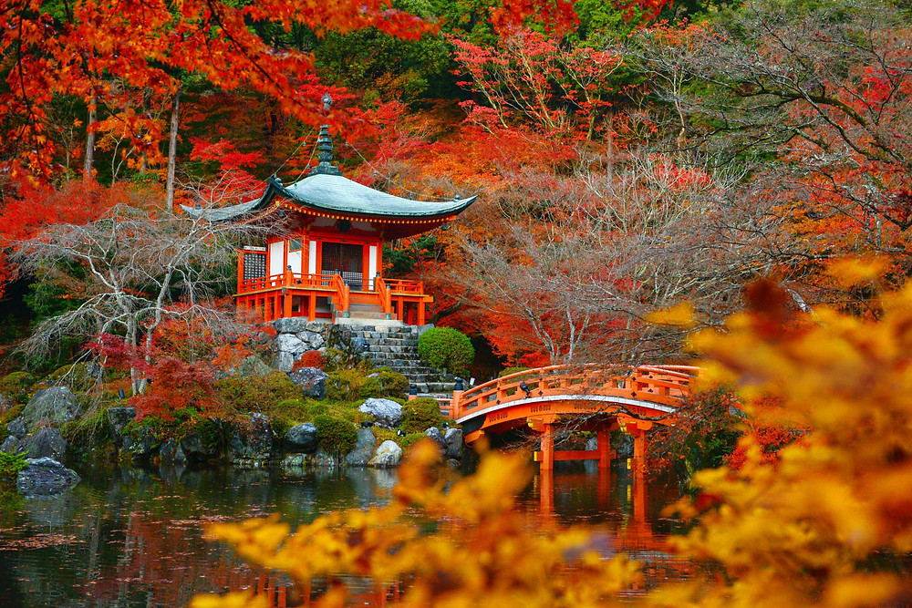 Daigoji temple in Kyoto (Getty Images)