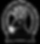 Tolsun Logo Black with Transparent Lette