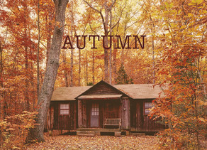 Autumn: The Best movies for fall mood