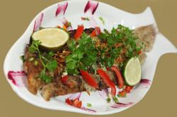 Fresh Grilled Grouper