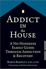 Addict in House: A No-Nonsense Family Guide Through Addiction & Recovery