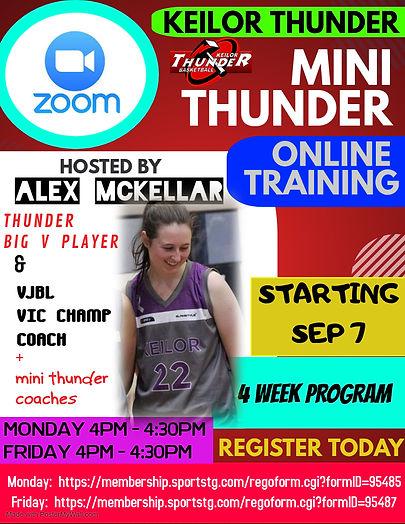 Mini Thunder Zoom.jpg
