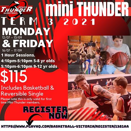 mini thunder T3 (1).png