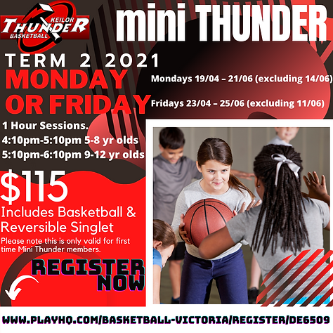 FINAL Mini Thunder Term 2 (1).png