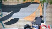 Killarney Heights High School | Mural