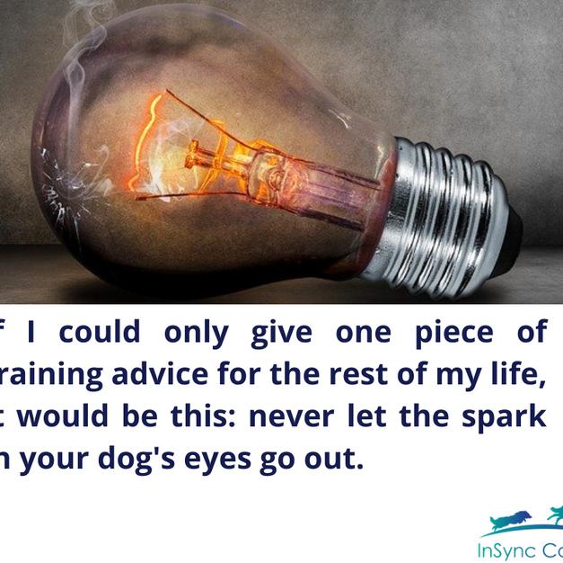 Keep the spark alive