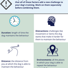Progressions in dog training