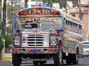 DMC Panama Quetzal Motivo